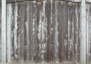 Texture of /wood/wood-fences/wood-fences_0063_03