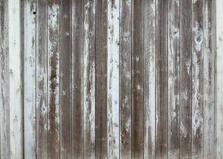 Texture of /wood/wood-fences/wood-fences_0063_04