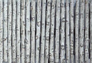 Wood fences 0064