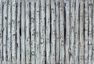 Texture of /wood/wood-fences/wood-fences_0064_02