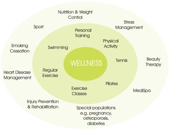 Wellness Diagram
