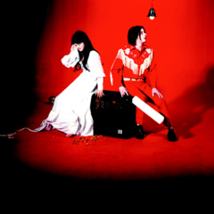Elephant  the white stripes