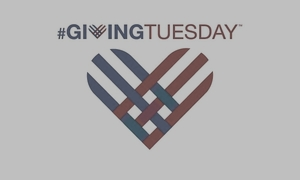 2013-11-18-givingtuesday3