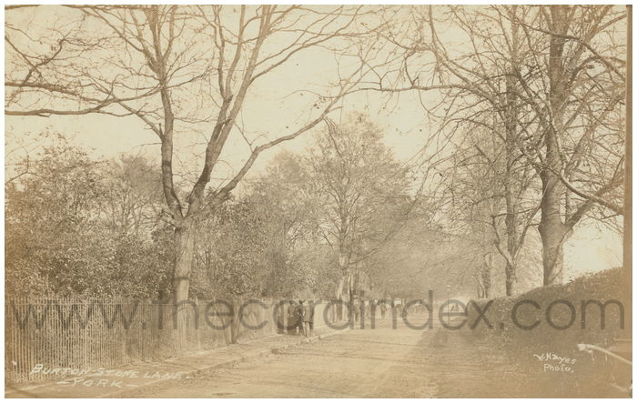 Postcard front: Burton Stone Lane - York