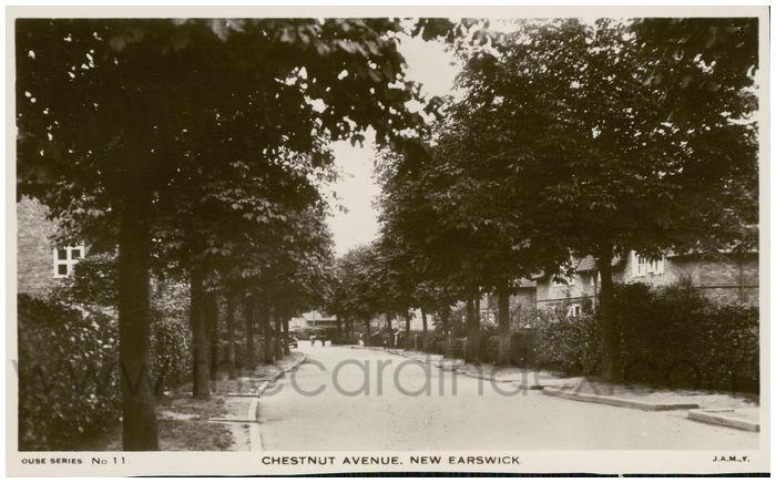 Postcard front: Chestnut Avenue. New Earswick