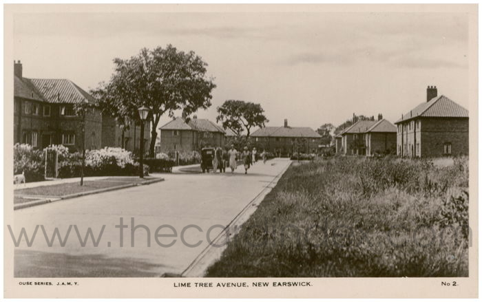 Postcard front: Lime Tree Avenue, New Earswick