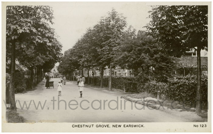 Postcard front: Chestnut Grove