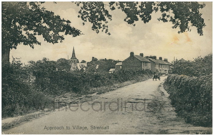 Postcard front: Approach to Village, Strensall