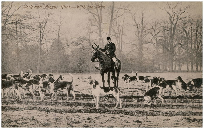 Postcard front: York and Ainsty Hunt. - With the Park