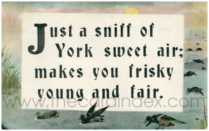 Postcard front: Just a sniff of York sweet air; makes ou frisky young and fair