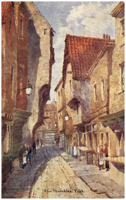 Postcard front: The Shambles, York