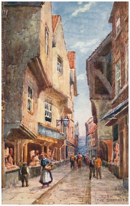 Postcard front: York The Shambles
