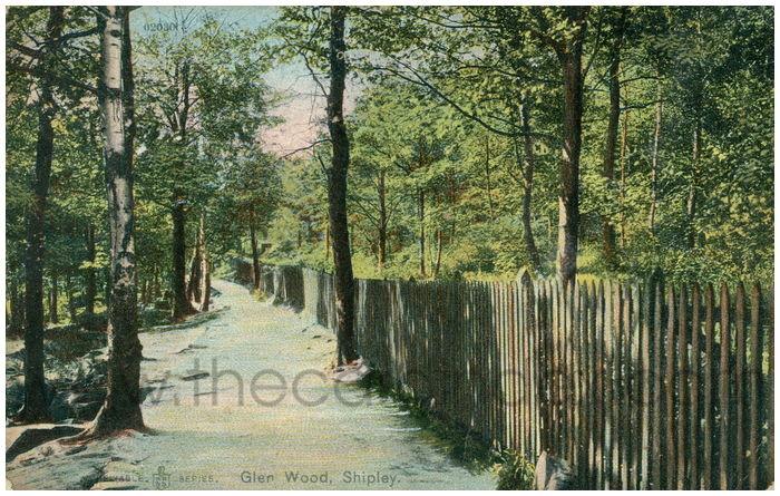 Postcard front: Glen Wood, Shipley