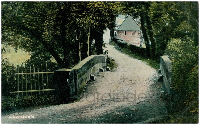 Postcard front: Dibbinsdale.