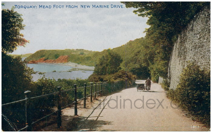 Postcard front: Torquay: Mead Foot From New Marine Drive.
