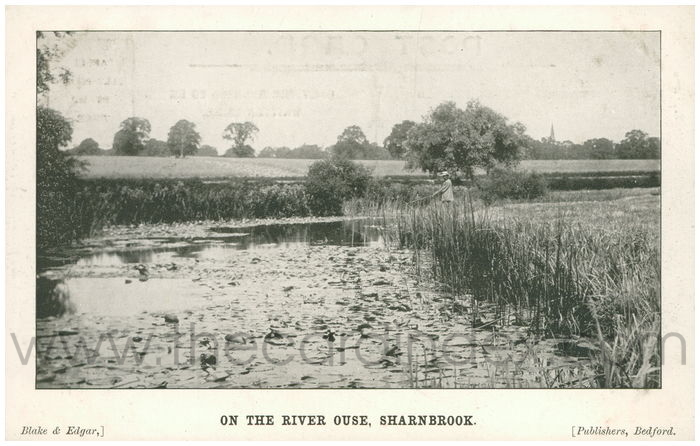 Postcard front: On the River Ouse, Sharnbrook.