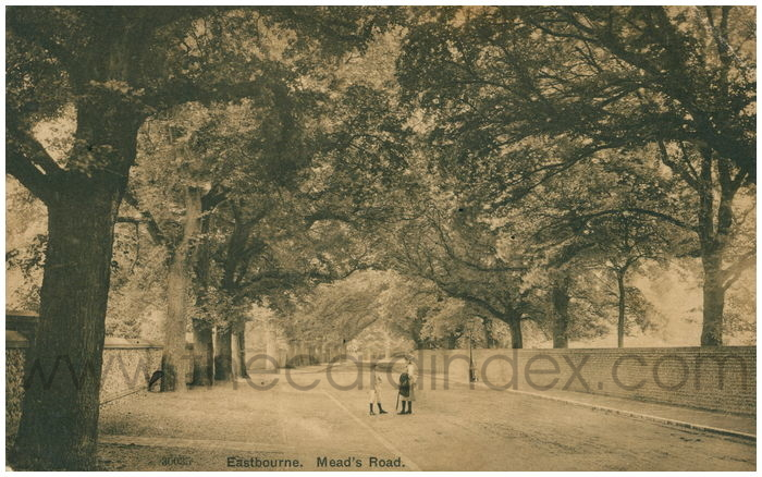 Postcard front: Eastbourne. Mead's Road.