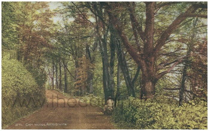 Postcard front: Cwm Woods, Aberystwyth.