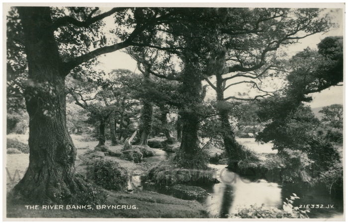 Postcard front: The River Banks, Bryncrug.