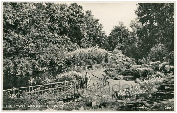Postcard front: The Lower Arboretum, Ipswich
