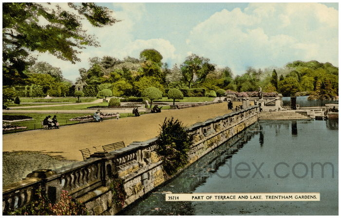 Postcard front: Part of Terrace and Lake. Trentham Gardens.