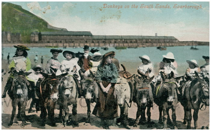 Postcard front: Donkeys on the South Sands, Scarborough