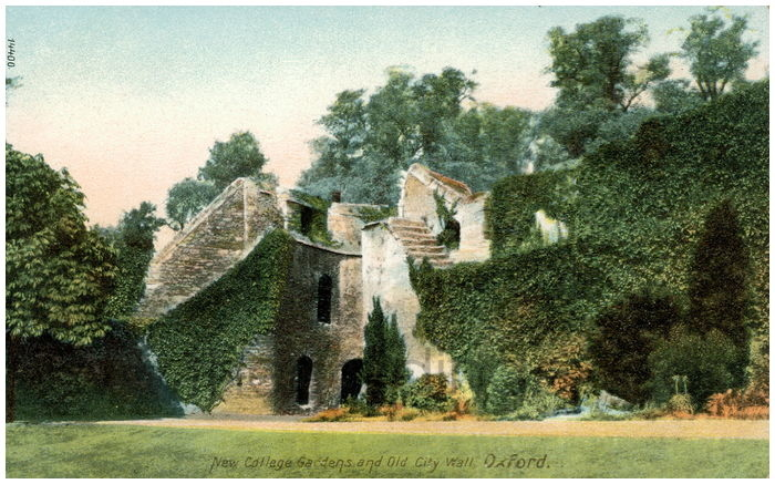 Postcard front: New College Gardens and Old City Wall, Oxford.