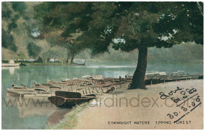 Postcard front: Connaught Waters Epping Forest