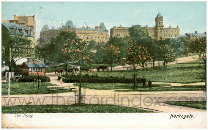 Postcard front: The Stray. Harrogate.