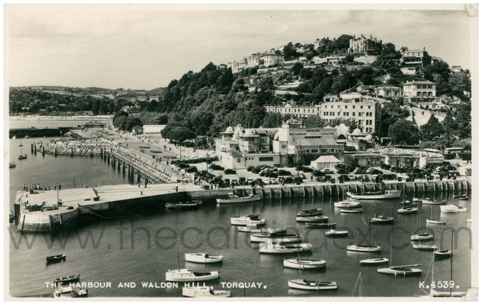 Postcard front: The Harbour and Waldon Hill, Torquay.
