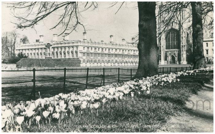 Postcard front: Clare College & King's Chapel, Cambridge.