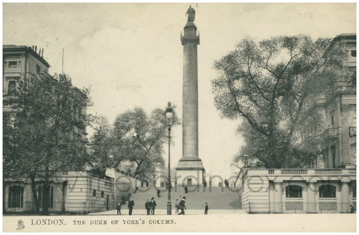 Postcard front: London. The Duke of York's Column.
