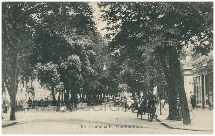 Postcard front: The Promenade, Cheltenham