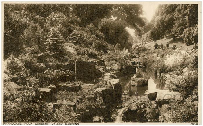Postcard front: Harrogate, Rock Gardens, Valley Gardens