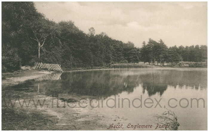 Postcard front: Ascot, Englemere Pond.