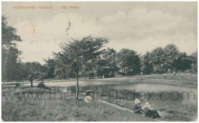 Postcard front: Wimbledon Common. - The Pond.