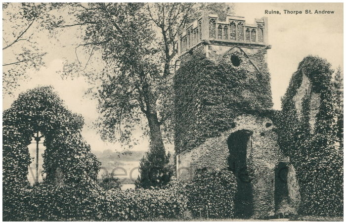 Postcard front: Ruins, Thorpe St. Andrew