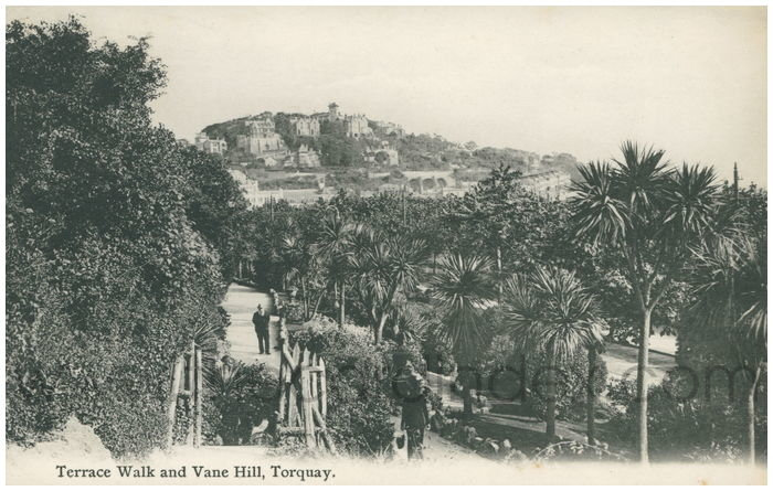Postcard front: Terrace Walk and Vane Hill, Torquay.