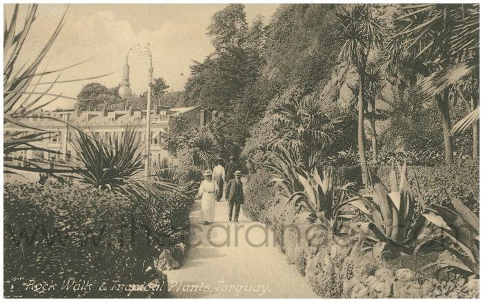 Postcard front: Rock Walk & Tropical Plants, Torquay.