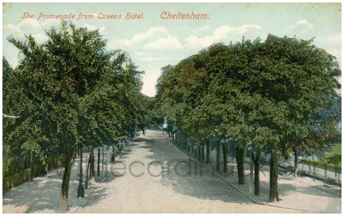 Postcard front: The Promenade from Queens Hotel. Cheltenham.