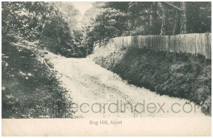 Postcard front: Bog Hill, Ascot