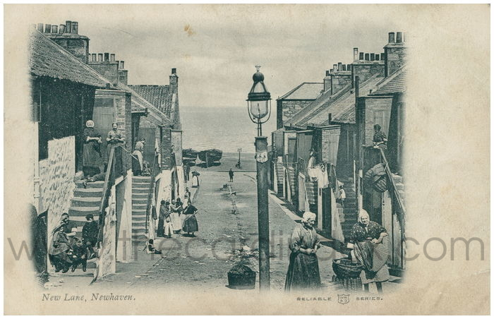 Postcard front: New Lane, Newhaven.