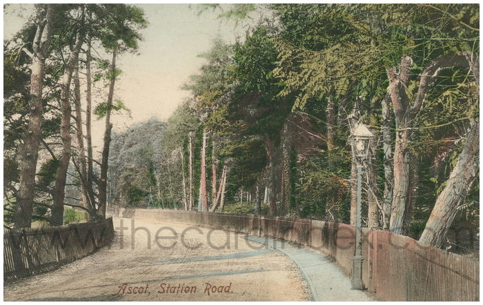 Postcard front: Ascot, Station Road.