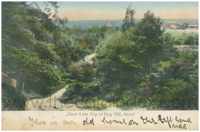 Postcard front: View from Top of Bog Hill, Ascot