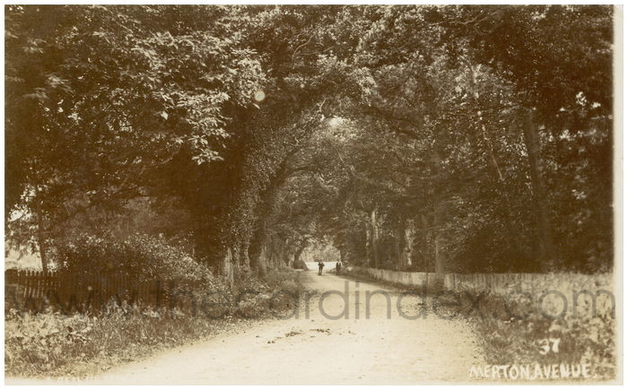 Postcard front: Merton Avenue