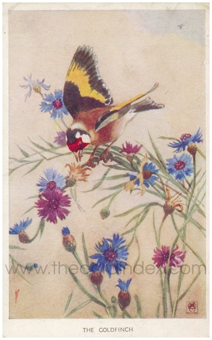 Postcard front: The Goldfinch