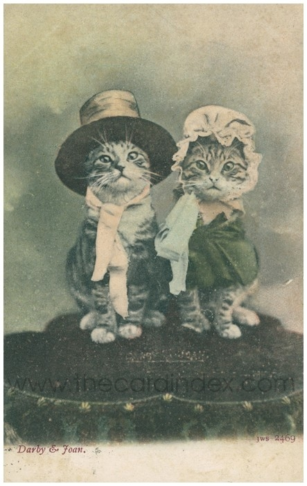 Postcard front: Darby and Joan