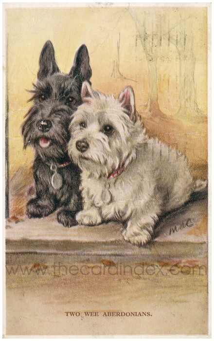 Postcard front: Two Wee Aberdonians.
