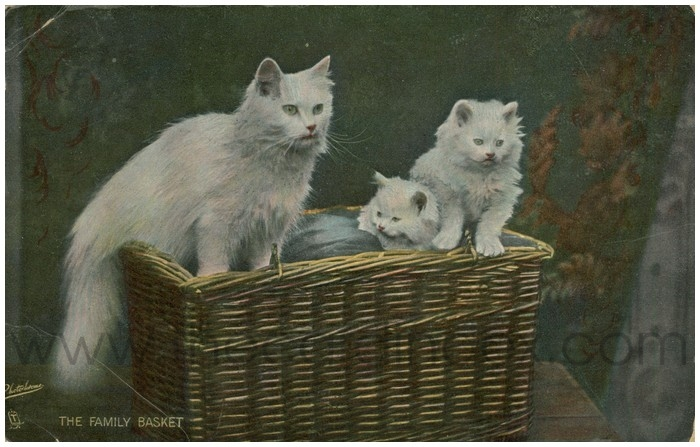 Postcard front: The Family Basket