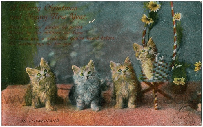 Postcard front: In Flowerland (A Merry Christmas and Happy New Year)